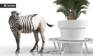 public space bench zebra